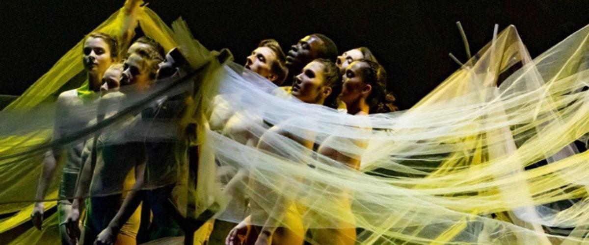 Photo Album: A Choreographers' Showcase